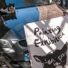 Painting-Exhibiton - Foto: Daniel Potthast